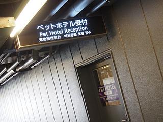 2014_09190027.JPG